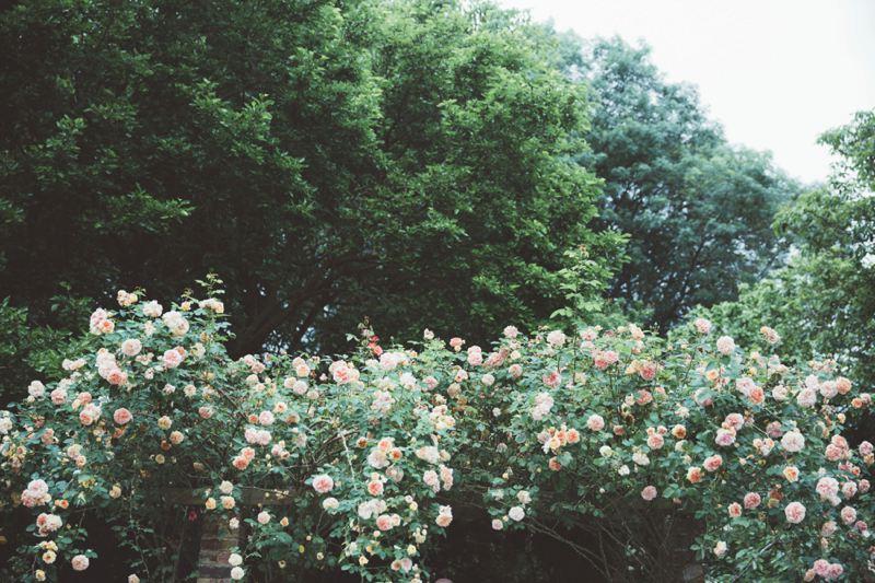 garden wedding oxford